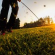 Chip Golf Shot — Stockfoto
