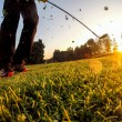 Golf: Short Game around the green. — Stock Photo