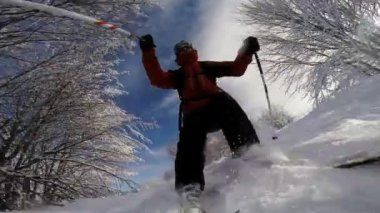 Skiing downhill in powder snow. — Stock Video