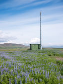Mobile phone telecommunication radio antenna tower — Stock fotografie