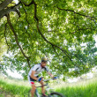 Cyclist in blurred motion riding a bike in a forest — Stock Photo #40244875