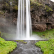 Seljalandsfoss is one of the most famous waterfalls of Iceland. — Stock Photo #45468831
