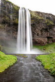 Seljalandsfoss is one of the most famous waterfalls of Iceland. — Foto de Stock