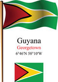 Guyana wavy flag and coordinates — Stock Vector