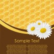 Honeycomb. Seamless vector illustration. — Stock Vector