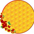 Honeycomb background with flowers - Stock Vector