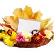 Stock Photo: Greeting card for text and autumn flowers
