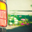 Angle shot of a car with grasses reflection — Stock Photo