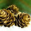 Сhristmas tree. Golden pine cones with branches. — Stock Photo