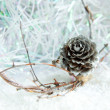 Silver pine cone on white christmas background — Stock Photo