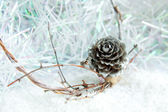 Silver pine cone on white christmas background — Photo