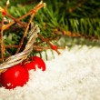Christmas decoration — Stock Photo #13779829