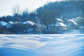 Winter landscape. Houses in snow wood — Stock Photo