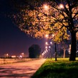 Stock Photo: Road in the park by night