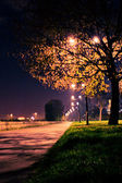 Road in the park by night — Stock Photo