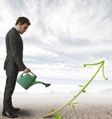 Groeiend bedrijf — Stockfoto