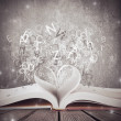 Love for book — Stock Photo #14531835