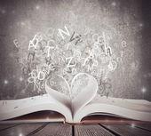 Kärlek för bok — Stockfoto