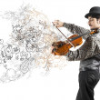 The violinist — Stock Photo
