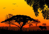Africa landscape — Stock Vector