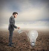Cultivate an idea — Stock Photo