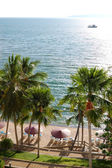Beach with palm trees of luxury hotel, Pattaya, Thailand — Stock Photo