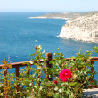 Stock Photo: View from terrace with rose plants on turquoise lagoon of Aegean