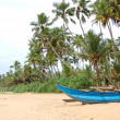 The traditional Sri Lanka's boat for fishing on the beach — Stock Photo