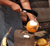 Women selling fruits of coconut tree, Sri Lanka — Stock Photo