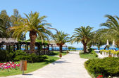 Path to beach at the luxury hotel, Halkidiki, Greece — Stock fotografie