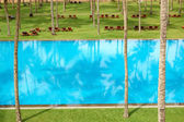 The swimming pool and green lawn at luxury hotel, Bentota, Sri L — Stockfoto
