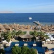 The swimming pool near beach at the luxury hotel, Sharm el Sheikh, Egypt — Stock Video #37632037