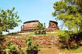 The Polonnaruwa ruins (ancient Sri Lanka's capital) — Zdjęcie stockowe