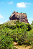 The Sigiriya (Lion's rock) is an ancient rock fortress and palac — Stock fotografie