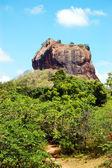 The Sigiriya (Lion's rock) is an ancient rock fortress and palac — Zdjęcie stockowe