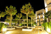 The trees in night illumination at luxury hotel, Halkidiki, Gree — Stock Photo