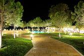 Los árboles en la iluminación de la noche en el hotel de lujo, halkidiki, gree — Foto de Stock