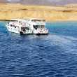 Постер, плакат: SHARM EL SHEIKH EGYPT DECEMBER 4: Snorkeling tourists and mo
