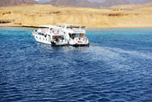 SHARM EL SHEIKH, EGYPT -  DECEMBER 4: Snorkeling tourists and mo — Stock Photo