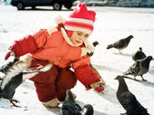 Child feeding doves — Foto Stock