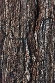 Granit kamień tekstura — Zdjęcie stockowe