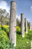 Sebastia archeology ancient ruins — Stock Photo