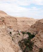 Saint George monastery in judean desert — Stock Photo