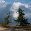Stockfoto: Hiking in natural park in Italy