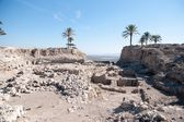Excavations in Israel — Stock Photo