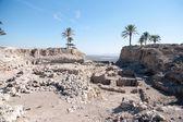 Excavations in Israel — Stock Photo