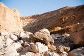 Dağlarda taş nead Lut çöl — Stok fotoğraf