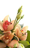 Bouquet of orchids and eustoma isolated — Stock Photo