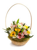 Basket with spring flowers isolated — Stock Photo
