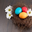 Nest with colorful Easter eggs with flowers — Stock Photo